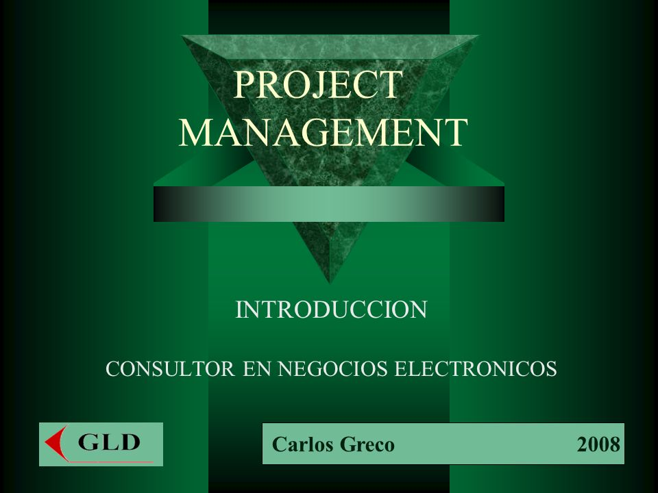 PROJECT MANAGEMENT INTRODUCCION CONSULTOR EN NEGOCIOS ELECTRONICOS Carlos Greco 2008