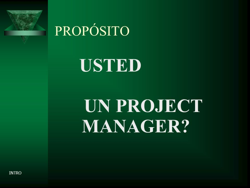 PROPÓSITO USTED UN PROJECT MANAGER? INTRO