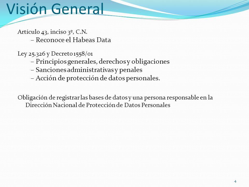 4 Visión General Artículo 43, inciso 3º, C.N. –Reconoce el Habeas Data Ley 25.326 y Decreto 1558/01 –Principios generales, derechos y obligaciones –Sa