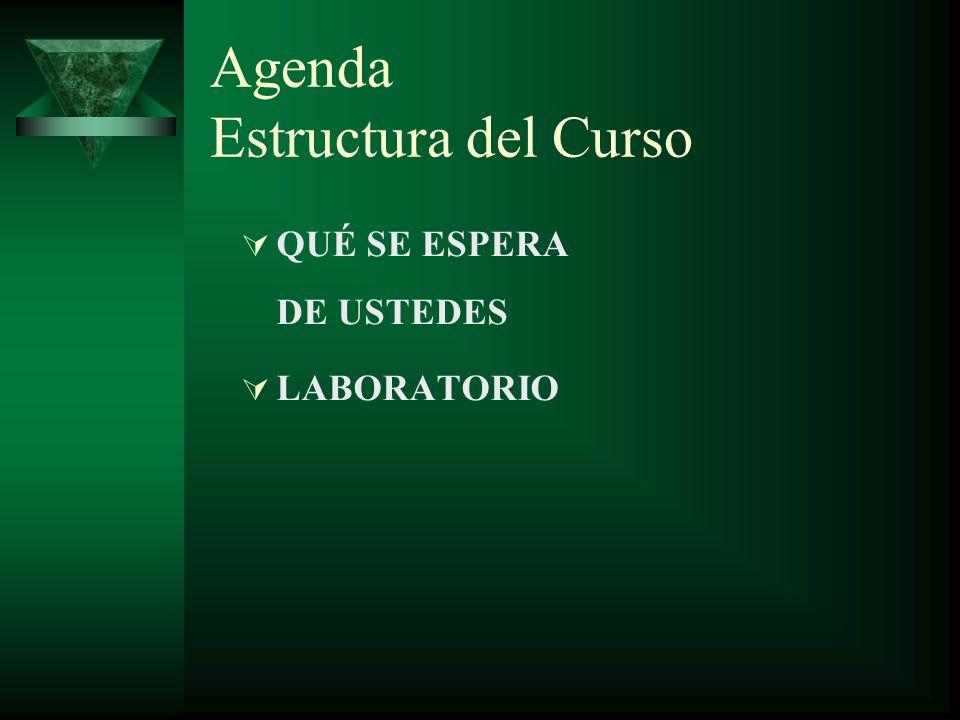 Agenda Estructura del Curso QUÉ SE ESPERA DE USTEDES LABORATORIO