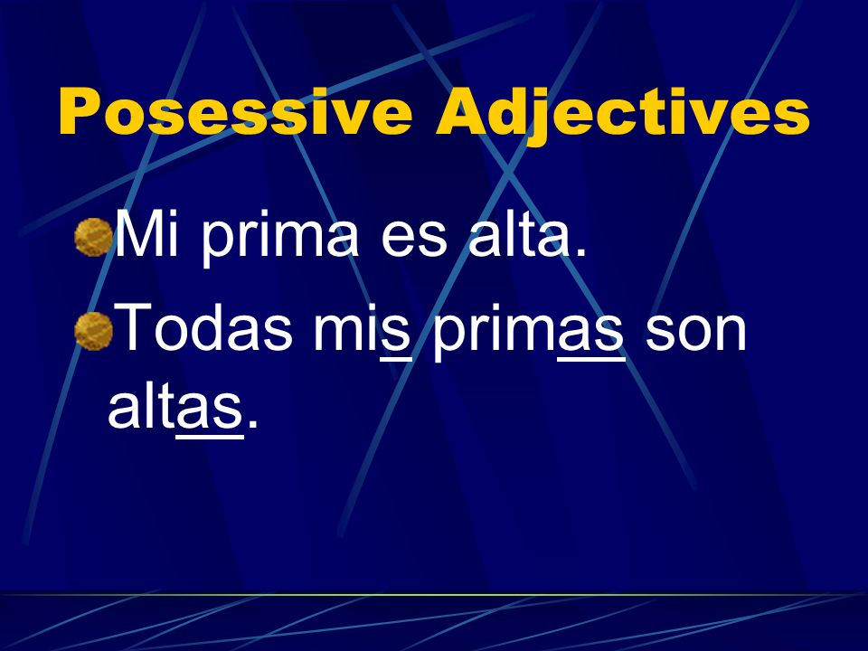 Possessive Adjectives The possessive adjective must be singular if the noun is singular and plural if the noun is plural. In other words, it must agre