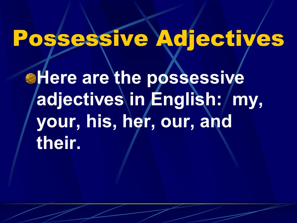 Possessive Adjectives Here are the possessive adjectives in English: my, your, his, her, our, and their.