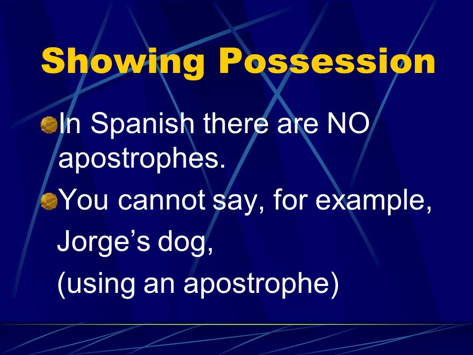 Possessive Adjectives The possessive adjective must be singular if the noun is singular and plural if the noun is plural.