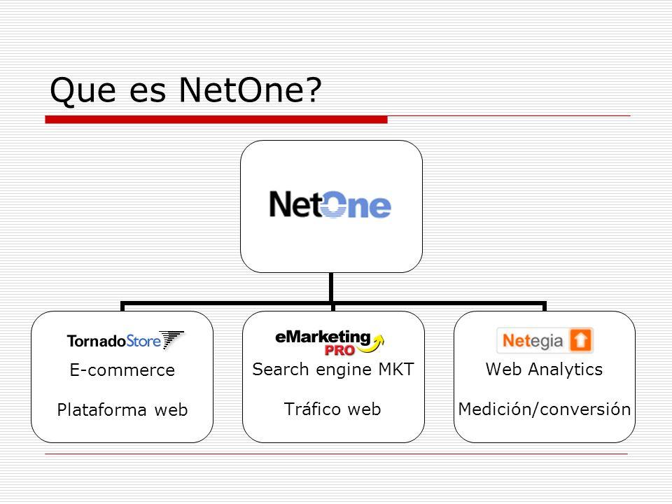 Que es NetOne?