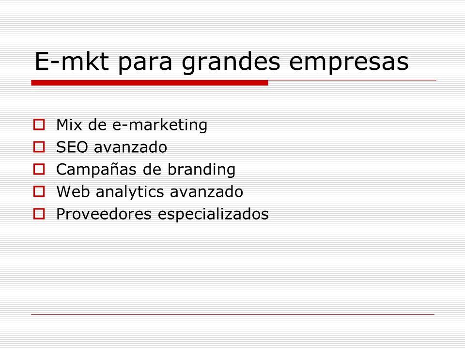E-mkt para grandes empresas Mix de e-marketing SEO avanzado Campañas de branding Web analytics avanzado Proveedores especializados