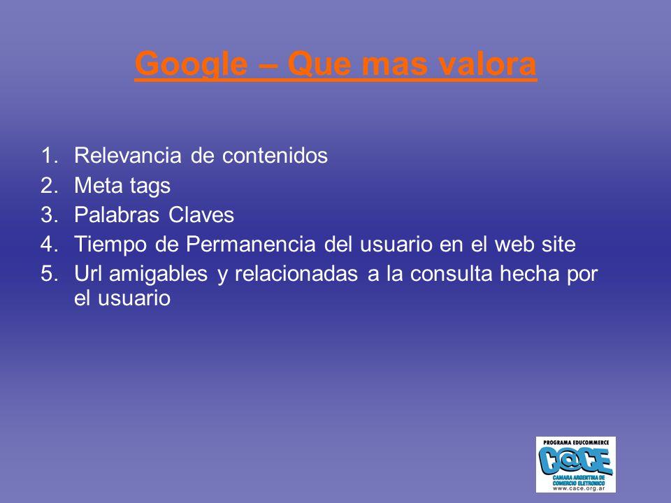 Google – Que mas valora 1.Relevancia de contenidos 2.Meta tags 3.Palabras Claves 4.Tiempo de Permanencia del usuario en el web site 5.Url amigables y relacionadas a la consulta hecha por el usuario