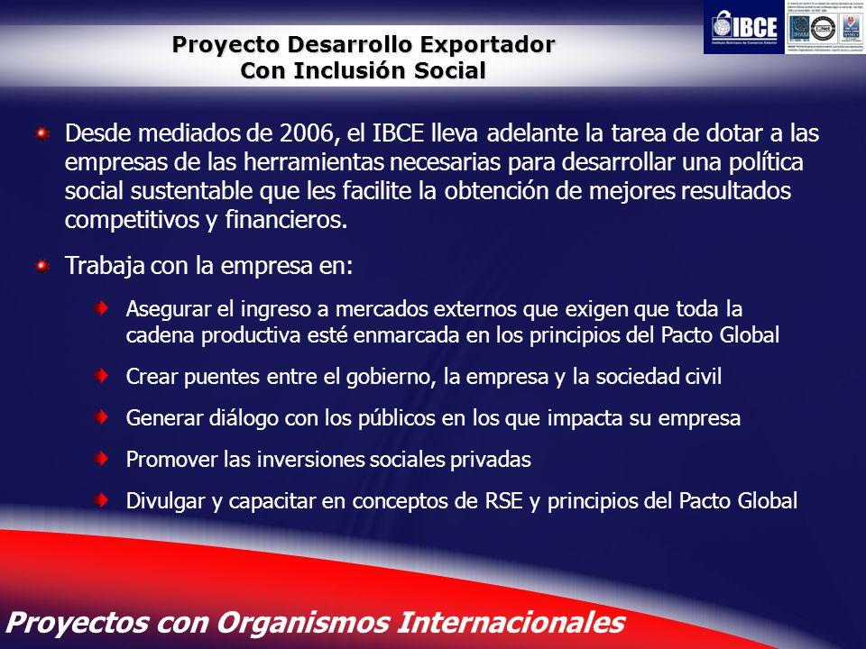 16 Proyecto Desarrollo Exportador Con Inclusión Social Desde mediados de 2006, el IBCE lleva adelante la tarea de dotar a las empresas de las herramie