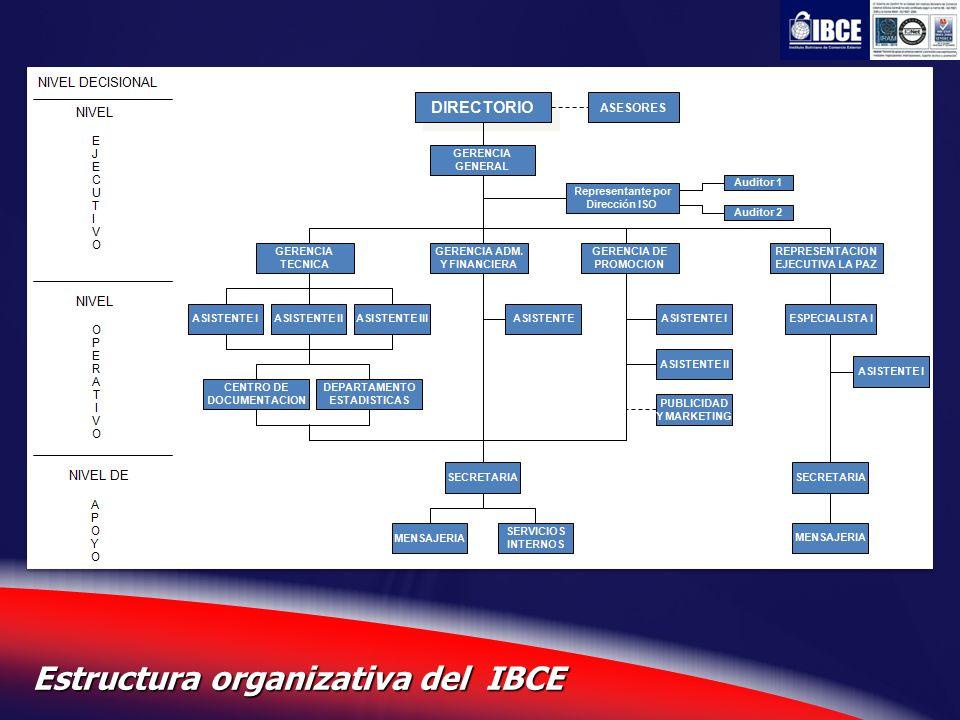 7 Estructura organizativa del IBCE