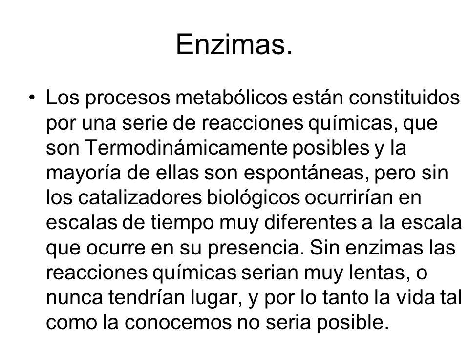 Algunas coenzimas