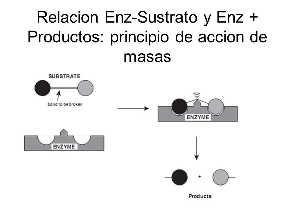 Resumen de las distintas formas de inhibicion enzimatica.