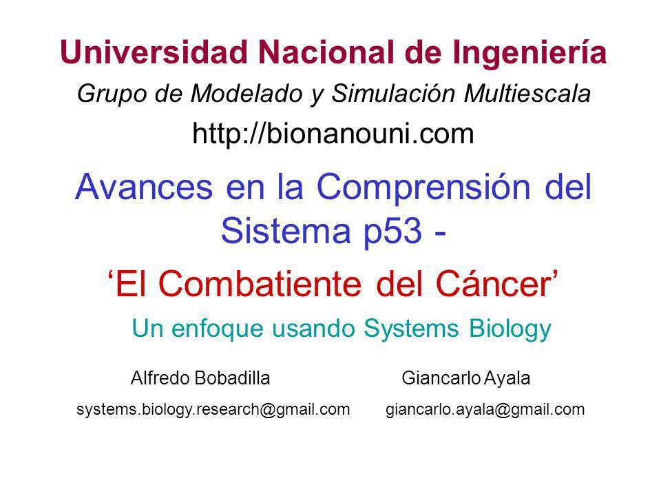 Un enfoque usando Systems Biology Avances en la Comprensión del Sistema p53 - El Combatiente del Cáncer Universidad Nacional de Ingeniería Grupo de Mo