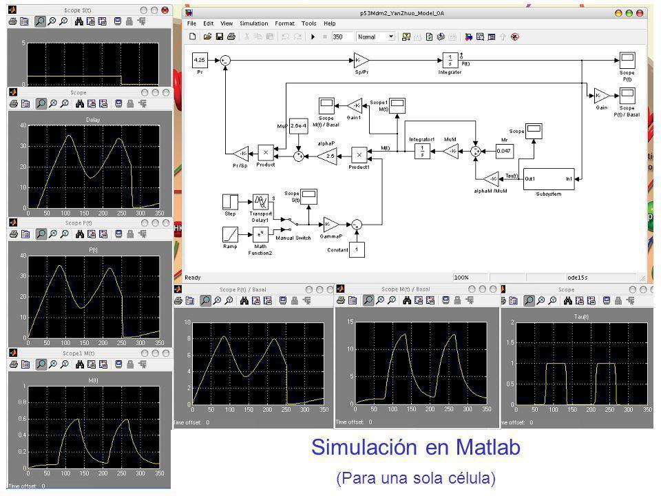 Simulación en Matlab (Para una sola célula)