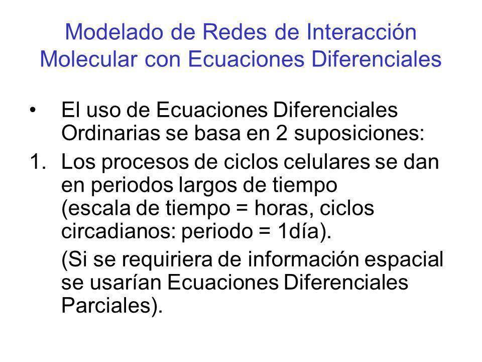 Modelado de Redes de Interacción Molecular con Ecuaciones Diferenciales 2.Las variables (concentraciones químicas) son funciones continuas en el tiempo.