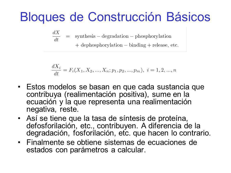 Bloques de Construcción Básicos Estos modelos se basan en que cada sustancia que contribuya (realimentación positiva), sume en la ecuación y la que re