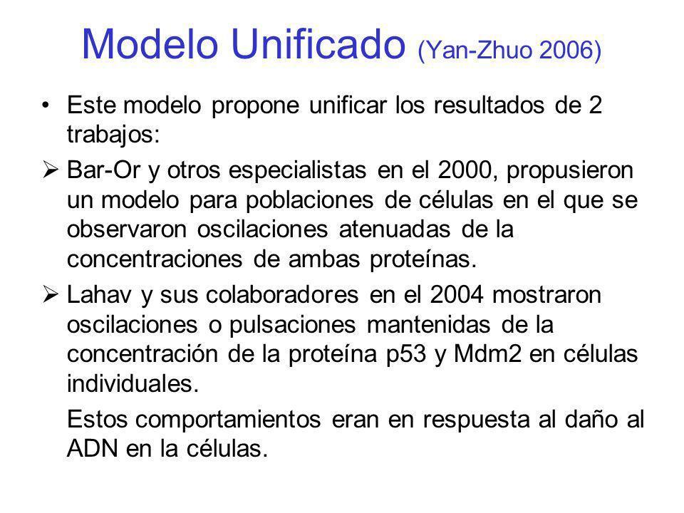 Modelo Unificado (Yan-Zhuo 2006) Este modelo propone unificar los resultados de 2 trabajos: Bar-Or y otros especialistas en el 2000, propusieron un mo