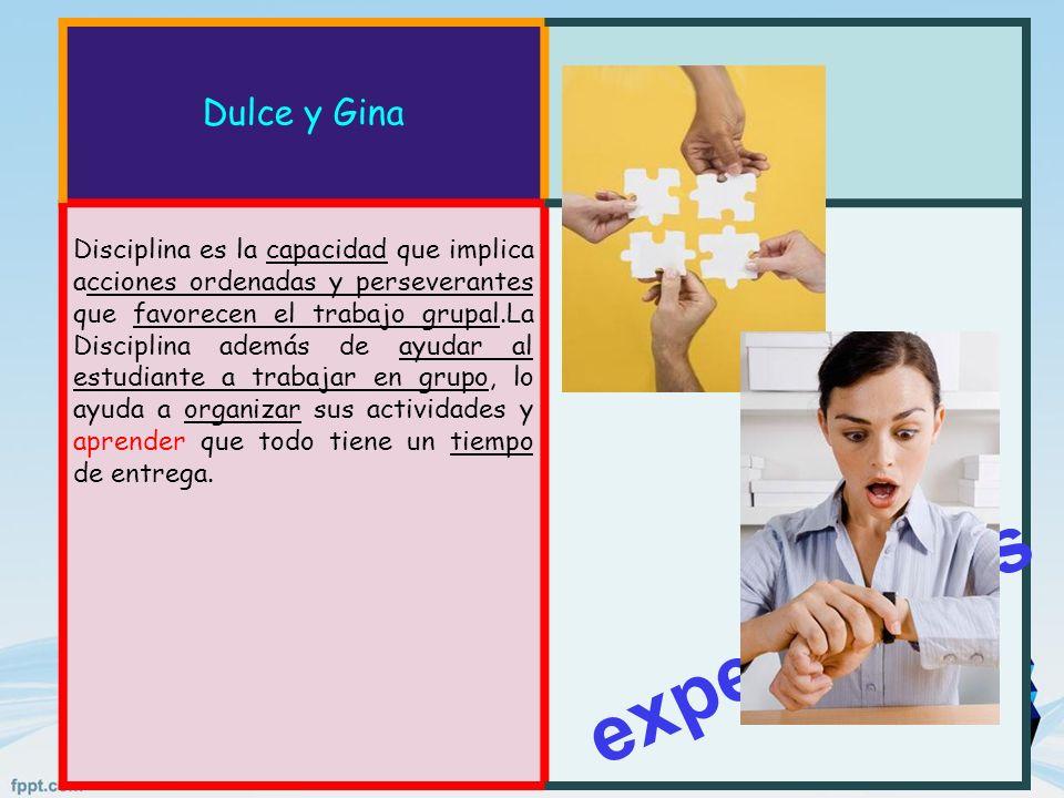 Dulce y Gina Disciplina es la capacidad que implica acciones ordenadas y perseverantes que favorecen el trabajo grupal.La Disciplina además de ayudar