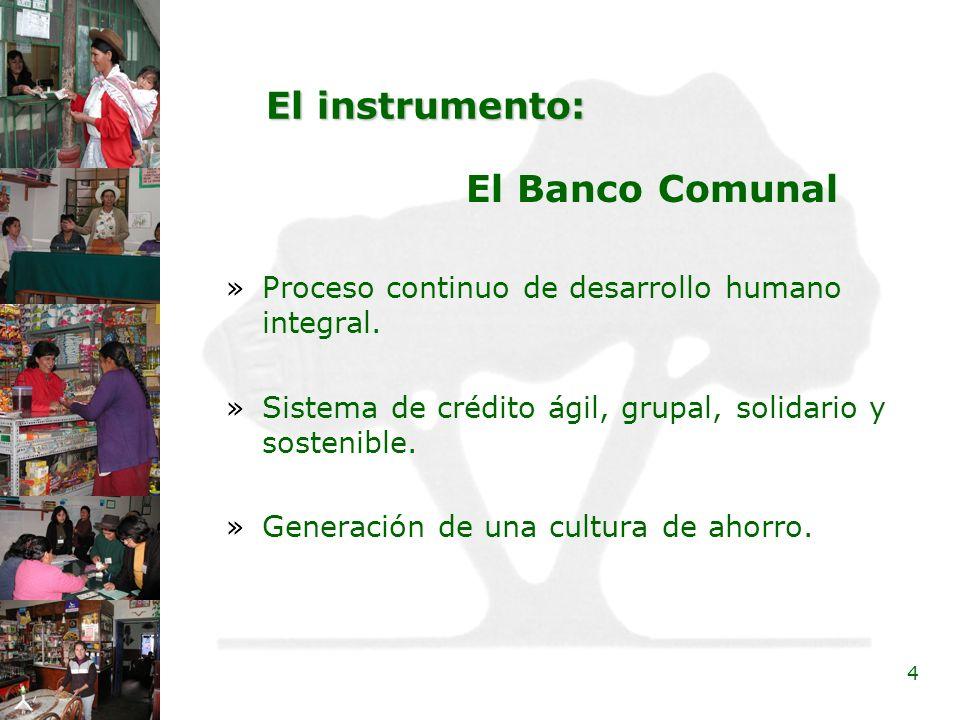 4 El instrumento: »Proceso continuo de desarrollo humano integral. »Sistema de crédito ágil, grupal, solidario y sostenible. »Generación de una cultur