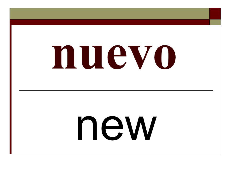 nuevo new