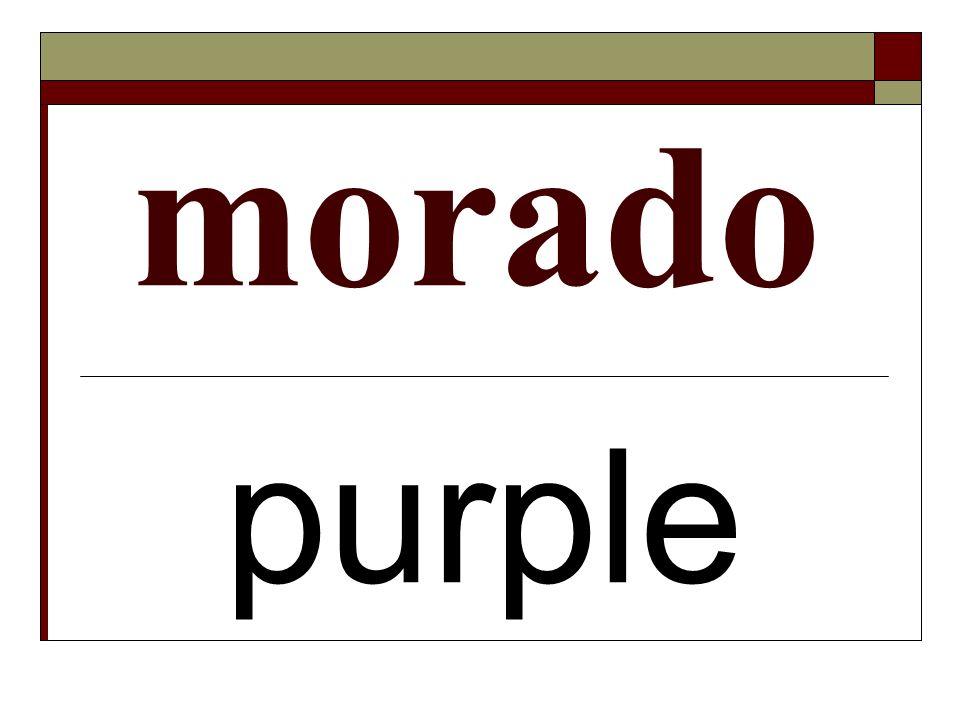 morado purple