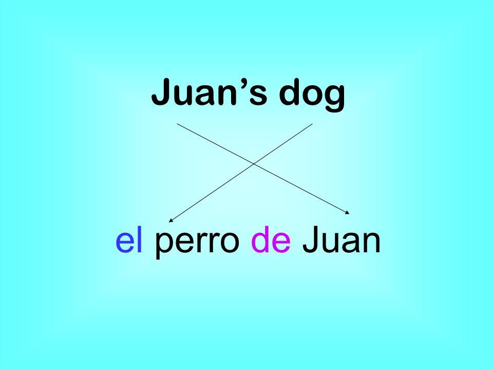 Juans dog el perro de Juan