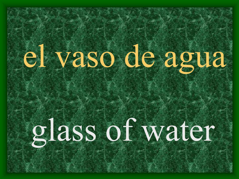 el vaso de agua glass of water