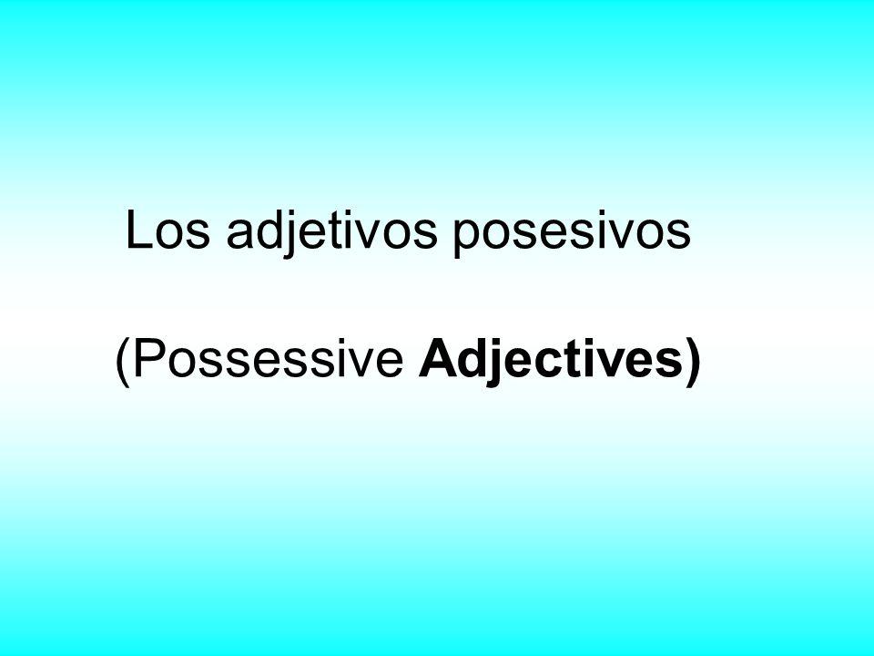Los adjetivos posesivos (Possessive Adjectives)