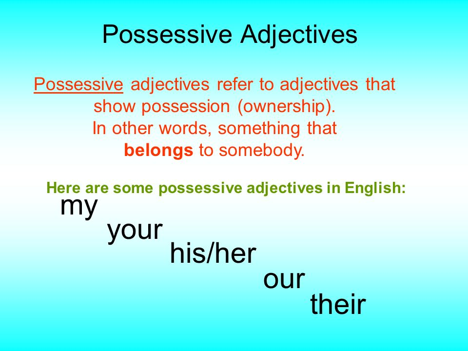 Possessive Adjectives Possessive adjectives refer to adjectives that show possession (ownership). In other words, something that belongs to somebody.