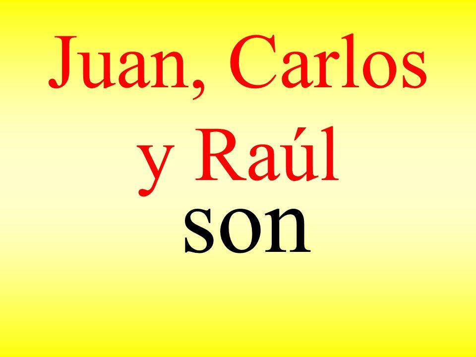 Juan, Carlos y Raúl son