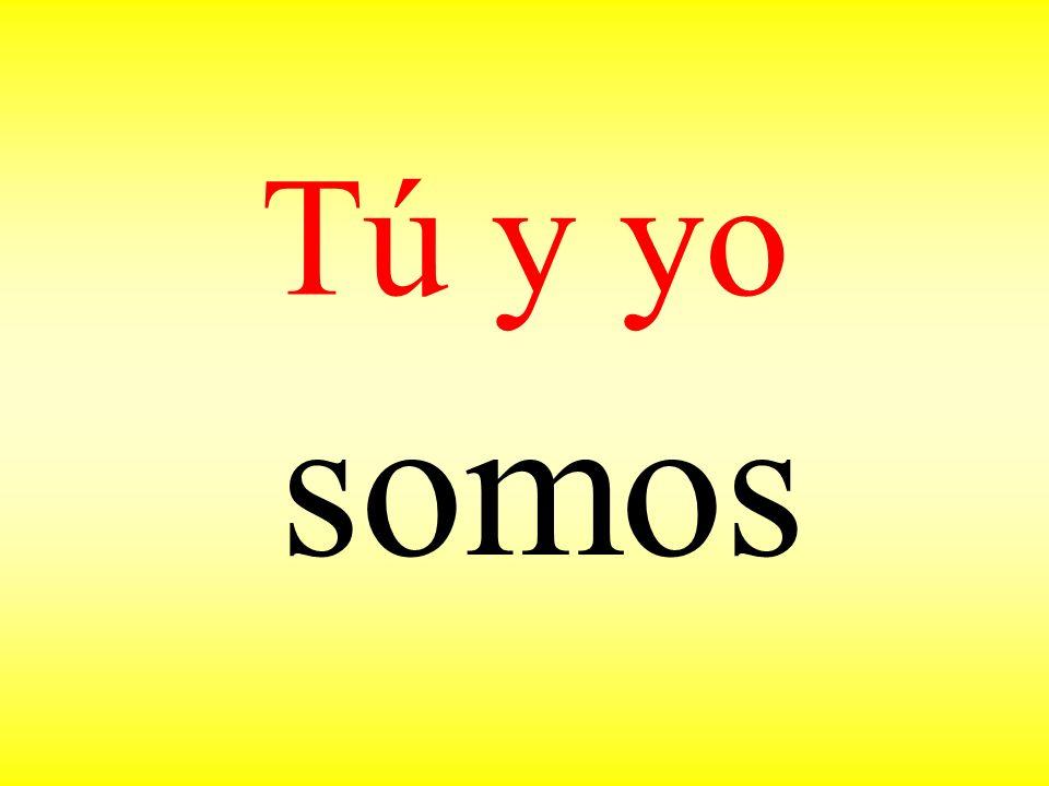 Tú y yo somos