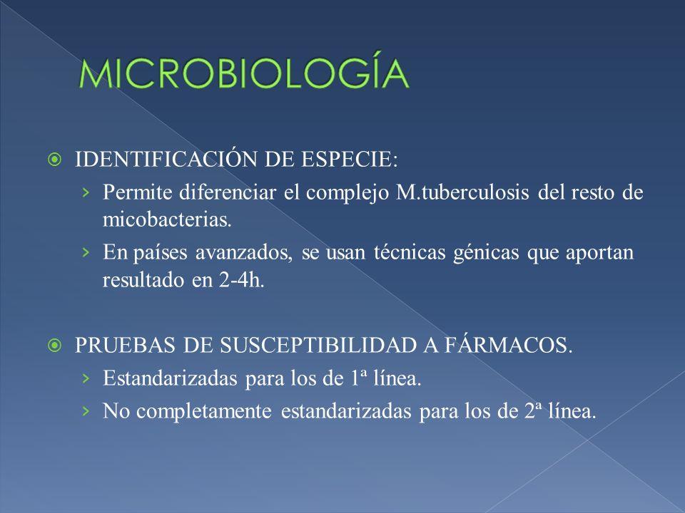 IDENTIFICACIÓN DE ESPECIE: Permite diferenciar el complejo M.tuberculosis del resto de micobacterias. En países avanzados, se usan técnicas génicas qu