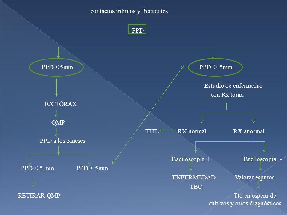 contactos íntimos y frecuentes PPD PPD 5mm Estudio de enfermedad con Rx tórax RX TÓRAX QMP TITL RX normal RX anormal PPD a los 3meses Baciloscopia + B