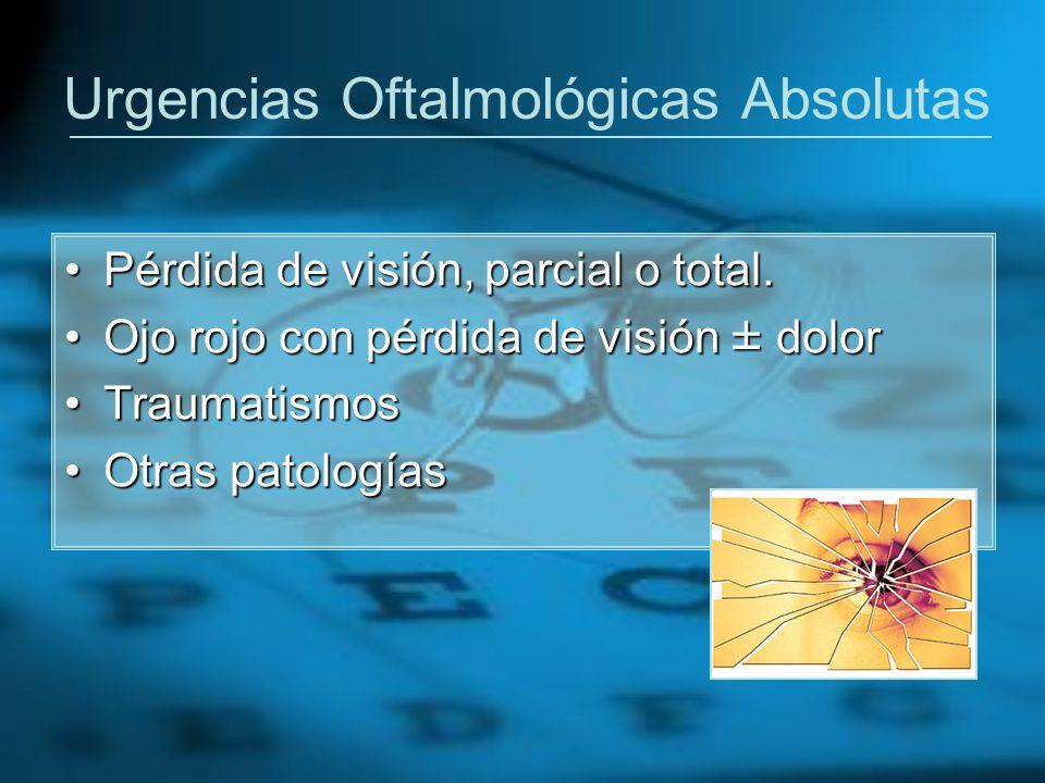 Puesta en funcionamiento Presentación del Circuito Asistencial de ITC por parte del Servicio de Oftalmología.Presentación del Circuito Asistencial de ITC por parte del Servicio de Oftalmología.