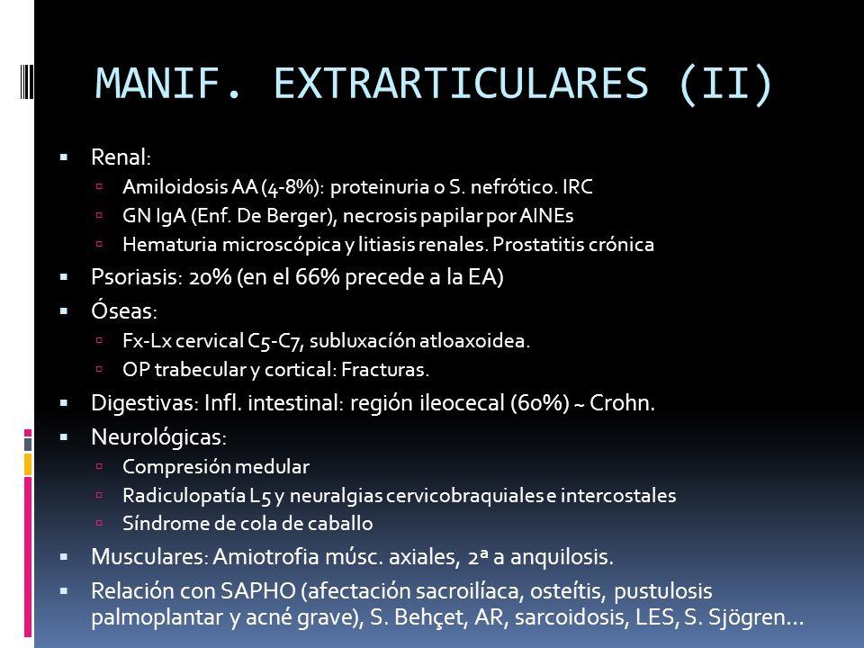 MANIF. EXTRARTICULARES (II) Renal: Amiloidosis AA (4-8%): proteinuria o S. nefrótico. IRC GN IgA (Enf. De Berger), necrosis papilar por AINEs Hematuri