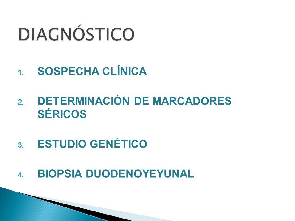 1. SOSPECHA CLÍNICA 2. DETERMINACIÓN DE MARCADORES SÉRICOS 3. ESTUDIO GENÉTICO 4. BIOPSIA DUODENOYEYUNAL