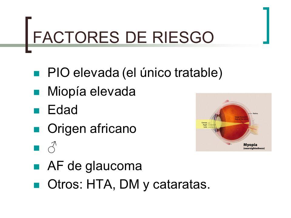 FACTORES DE RIESGO PIO elevada (el único tratable) Miopía elevada Edad Origen africano AF de glaucoma Otros: HTA, DM y cataratas.