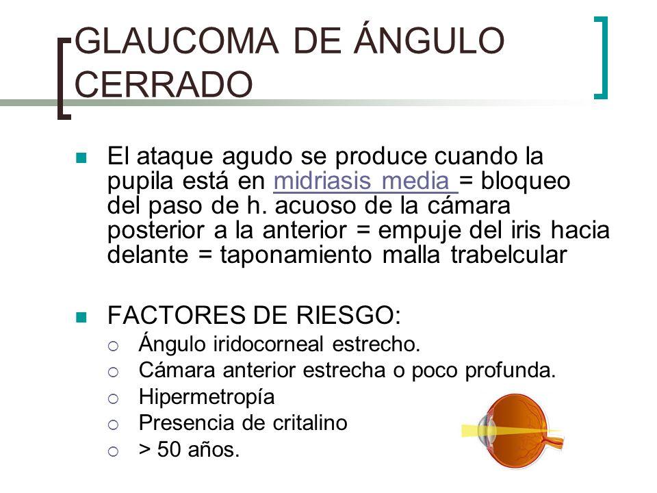 GLAUCOMA DE ÁNGULO CERRADO El ataque agudo se produce cuando la pupila está en midriasis media = bloqueo del paso de h. acuoso de la cámara posterior