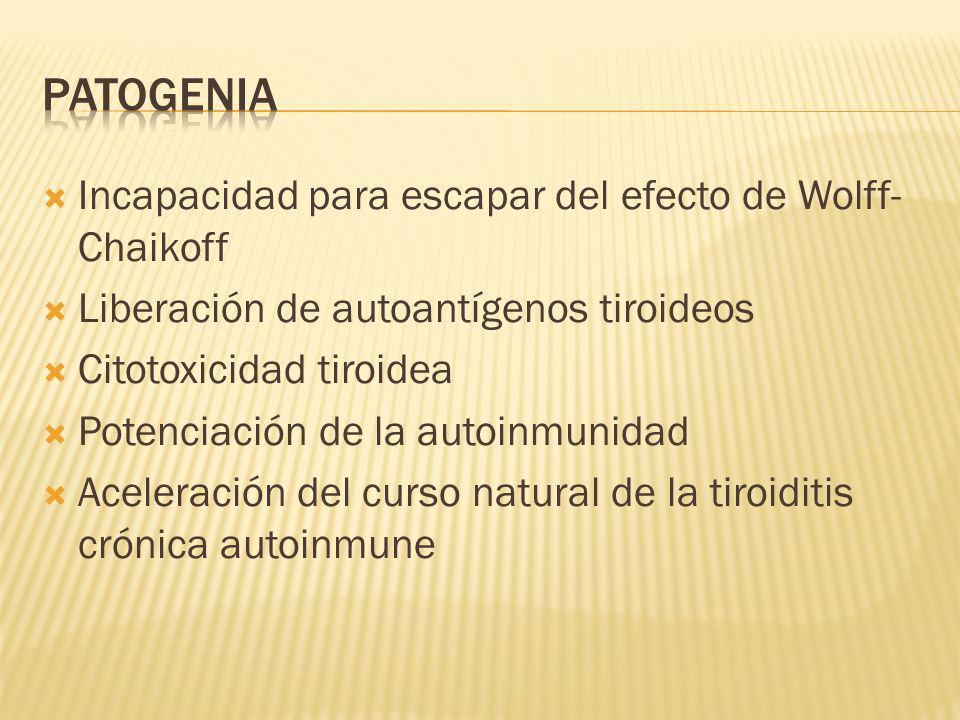 Incapacidad para escapar del efecto de Wolff- Chaikoff Liberación de autoantígenos tiroideos Citotoxicidad tiroidea Potenciación de la autoinmunidad A