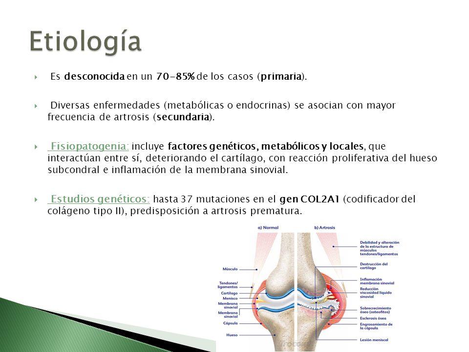 Es desconocida en un 70-85% de los casos (primaria). Diversas enfermedades (metabólicas o endocrinas) se asocian con mayor frecuencia de artrosis (sec
