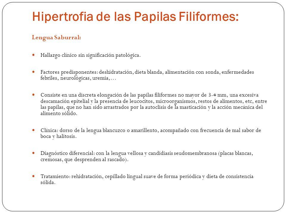 Hipertrofia de las Papilas Filiformes: Lengua Saburral: Hallazgo clínico sin significación patológica. Factores predisponentes: deshidratación, dieta