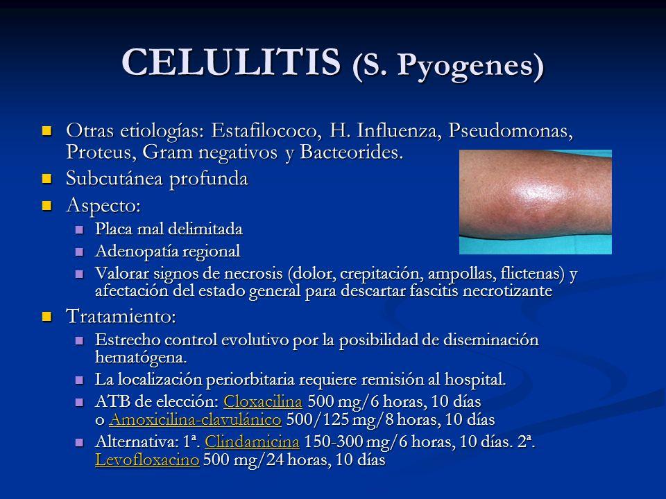 CELULITIS (S. Pyogenes) Otras etiologías: Estafilococo, H. Influenza, Pseudomonas, Proteus, Gram negativos y Bacteorides. Otras etiologías: Estafiloco