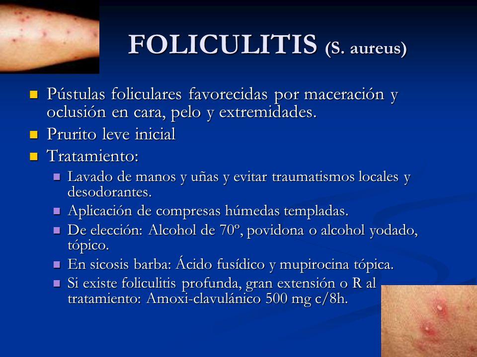 FOLICULITIS (S. aureus) FOLICULITIS (S. aureus) Pústulas foliculares favorecidas por maceración y oclusión en cara, pelo y extremidades. Pústulas foli