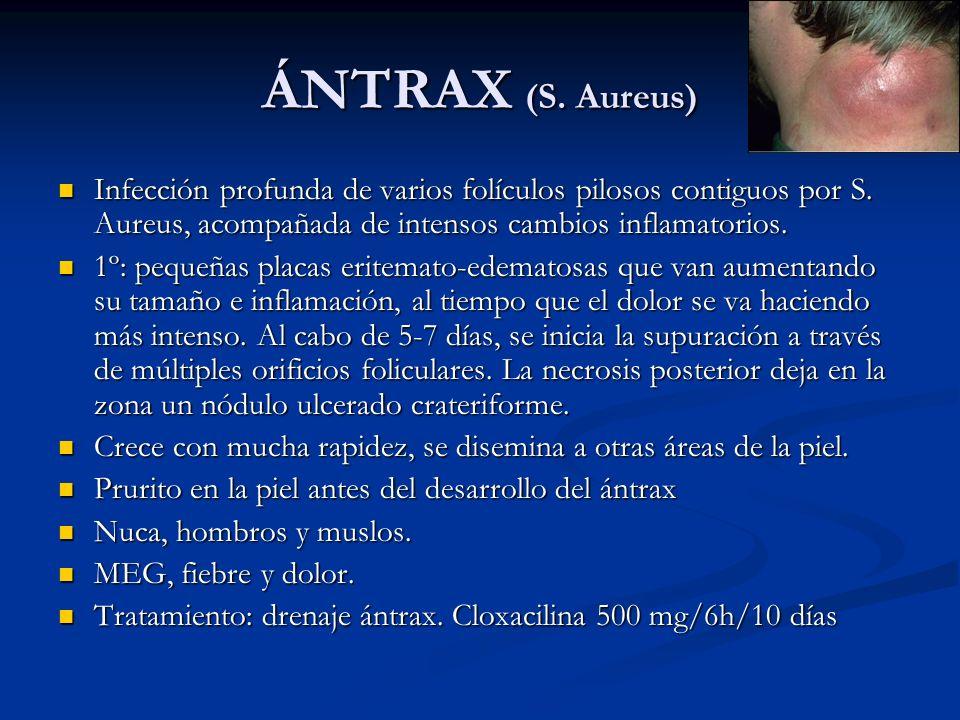 ÁNTRAX (S. Aureus) Infección profunda de varios folículos pilosos contiguos por S. Aureus, acompañada de intensos cambios inflamatorios. Infección pro