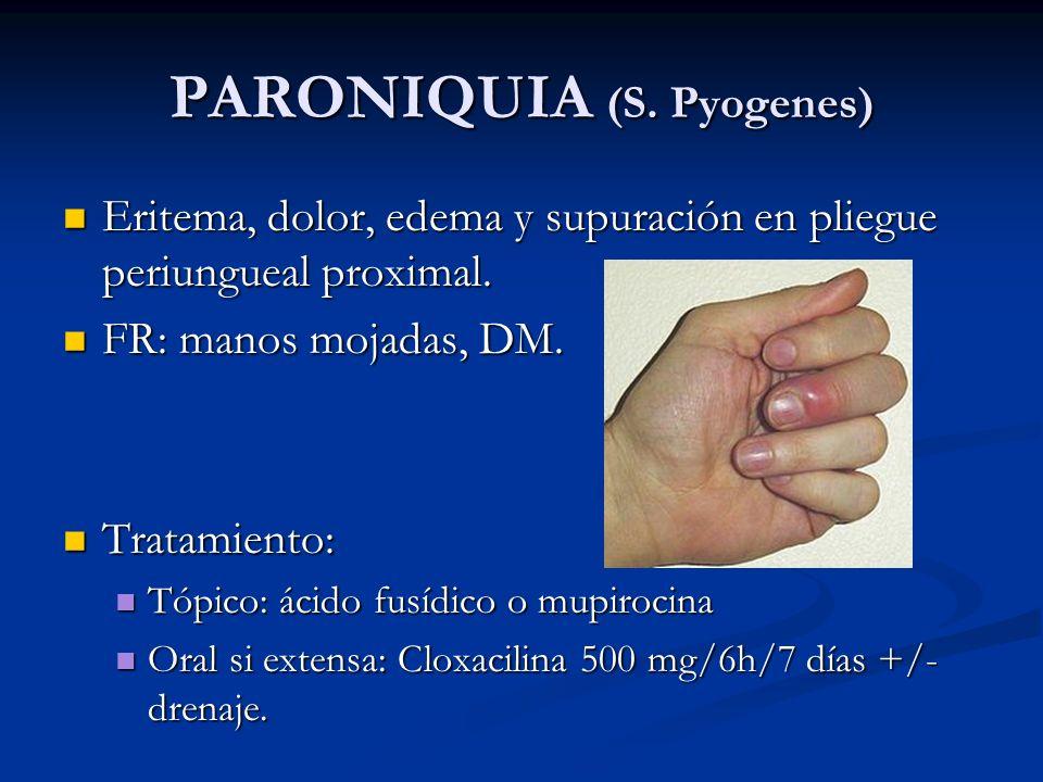 PARONIQUIA (S. Pyogenes) Eritema, dolor, edema y supuración en pliegue periungueal proximal. Eritema, dolor, edema y supuración en pliegue periungueal