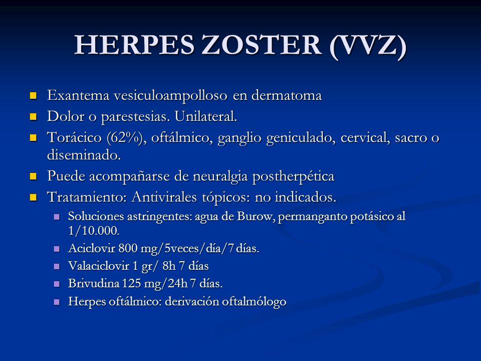 HERPES ZOSTER (VVZ) Exantema vesiculoampolloso en dermatoma Exantema vesiculoampolloso en dermatoma Dolor o parestesias. Unilateral. Dolor o parestesi