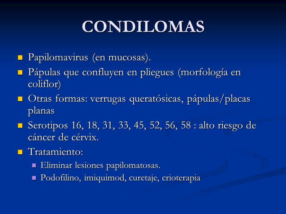 CONDILOMAS Papilomavirus (en mucosas). Papilomavirus (en mucosas). Pápulas que confluyen en pliegues (morfología en coliflor) Pápulas que confluyen en