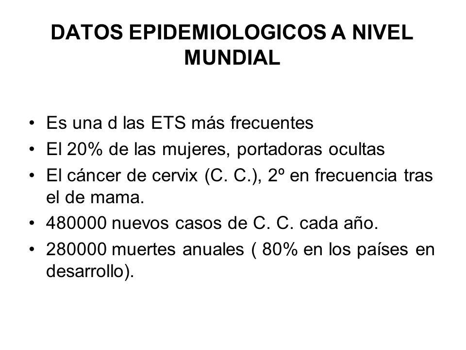 EPIDEMIOLOGIA DE LA INFECCION VPH EN ESPAÑA La prevalencia es de las más bajas del mundo, entre el 1.3 y el 5 %, con una media del 3 %.