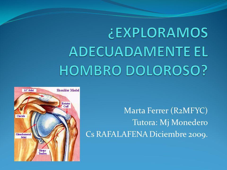 Marta Ferrer (R2MFYC) Tutora: Mj Monedero Cs RAFALAFENA Diciembre 2009.