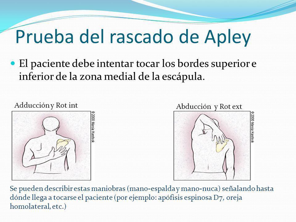 Prueba del rascado de Apley El paciente debe intentar tocar los bordes superior e inferior de la zona medial de la escápula.