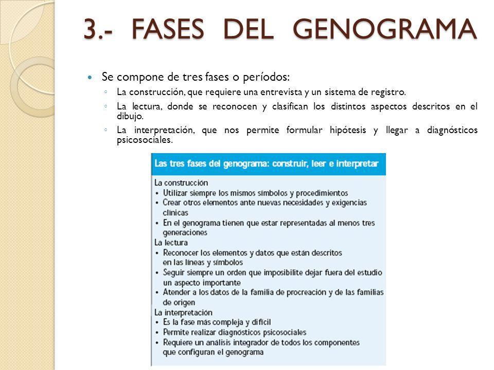 3.- FASES DEL GENOGRAMA Se compone de tres fases o períodos: La construcción, que requiere una entrevista y un sistema de registro. La lectura, donde