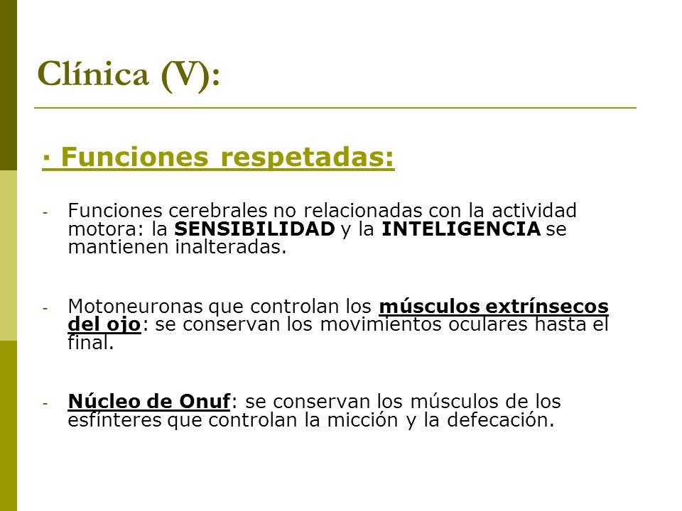 Clínica (V): · Funciones respetadas: - Funciones cerebrales no relacionadas con la actividad motora: la SENSIBILIDAD y la INTELIGENCIA se mantienen in